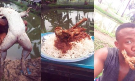 Nigerian man makes stew with Frog meat