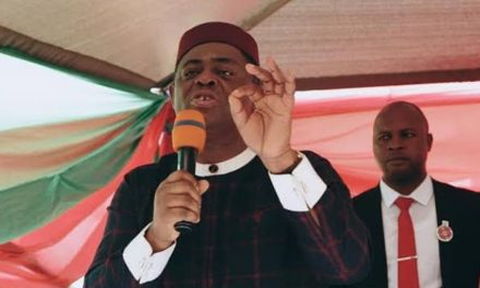 Nigeria is in trouble and is heading for a full-blown depression – Femi Fani-Kayode on oil price drop