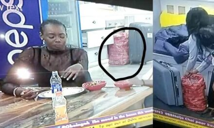 BBNaija: A Ghana Must Go Bag spotted in the 'Lockdown' House