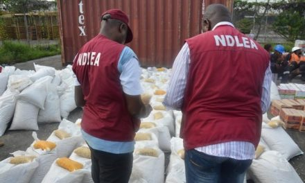 Drug test before marriage not for ladies only – NDLEA