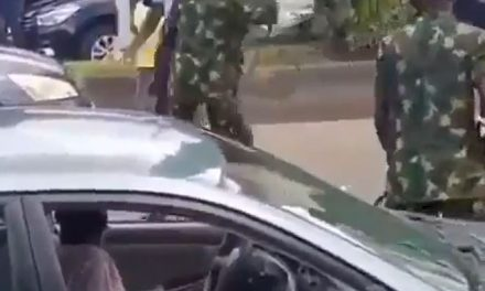 Angry protester refuses to back down despite being flogged by soldiers
